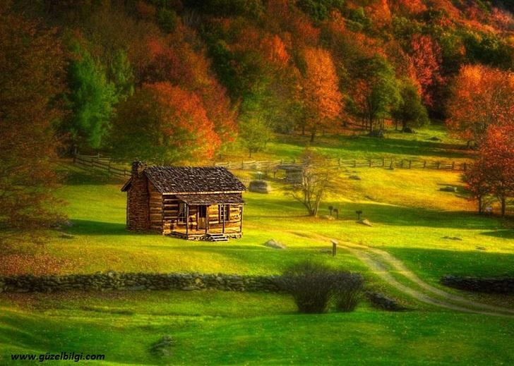 Doğada Zaman Şiirleri, Toprak Şiirleri, Mevsim Şiirleri,Ağaç şiirleri, Ümit Şiirleri,Duygusal Şiirler, hüzünlü şiirler, ,En güzel şiirler, Hipnozsiirler.com'da Sizi bekliyor